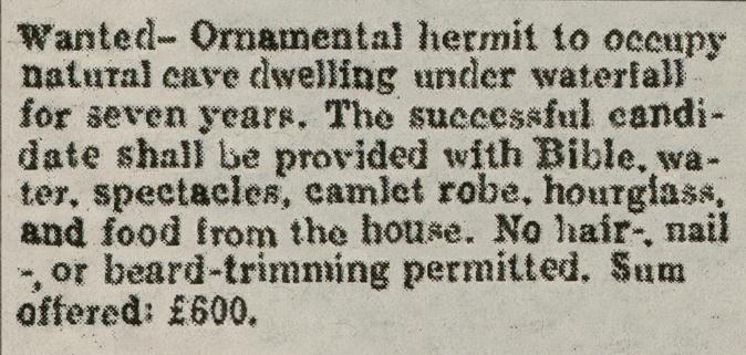 ornamental-hermit